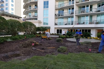 Harbor Island Sod Installation