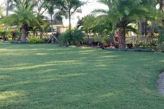 Landscaping and Sod Installation Tampa FL
